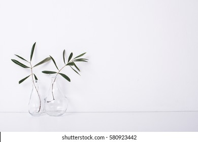 Two olive branches in glass bottles