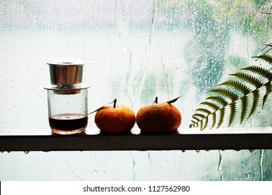 Two orange fruit, coffee cup, fern leaf on rain background, contrast color among orange and cyan make lovely in rainy day with raindrops on window