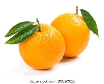Two orange fruits with green leaves isolated on white background.