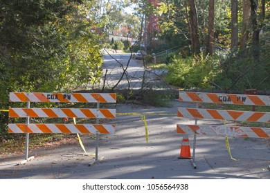 Two orange and white striped roadblocks with yellow warning tape rope off an area where a large tree and utility wires have fallen down across a road