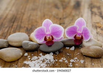 Two orchid and pebbles with pile of salt on old wood