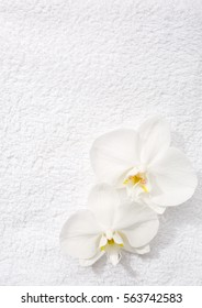 Two  orchids   lying on white terry towel.  View from above. Spa concept.