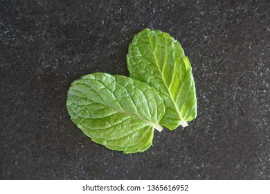 Two organic mint leaves on gray background