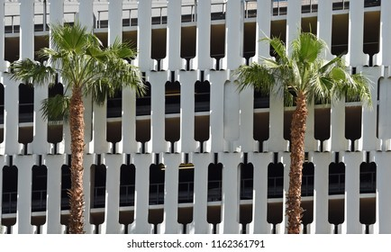 Two palm trees in front of a distinct white parking garage facade