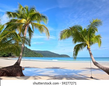 Two palm trees on clear sand near the sea under blue sky