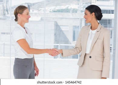 Two partners shaking hands in the office