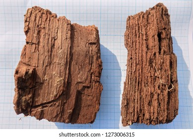 Two peices of wooden artefacts found during the archaeological excavations settled on the sheet of paper. Remains (part of ancient tomb) found in catacomb under ground. Outdoors, copy space, close up.