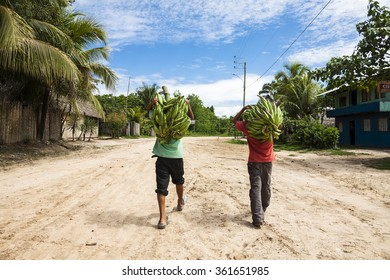 Two people carrying plantain