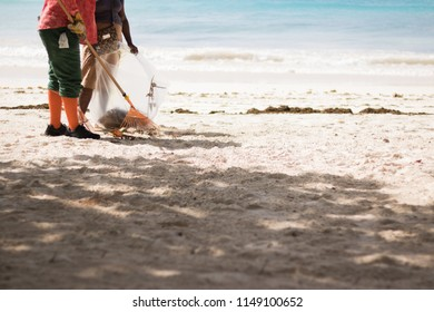 Two people are cleaning a nice sandy beach near the sea on a sunny morning.