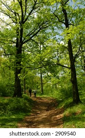 Two people enjoying the spring in the forest