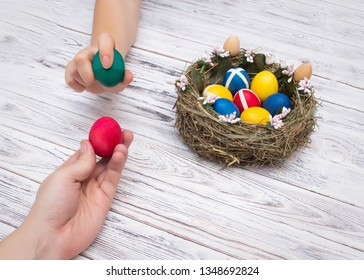 two people holding colorful chicken easter eggs on a white wooden background concept of the game and tradition in egg fight, hands, nest