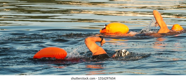 Two people swimming in the long island sound with orange flotation devices floating behind them for their safety.