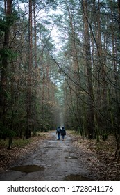 Two people walking in the forest path on a rainy day puddles trees around
