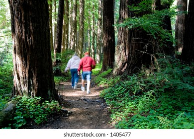 Two people walking through the forest. Longer exposure with motion blur.