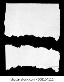 Two pieces of torn paper on black