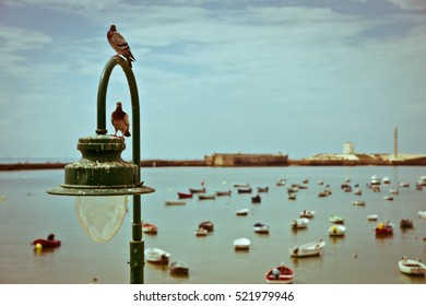 Two pigeons sitting on the lamp by the sea with the boats in the background