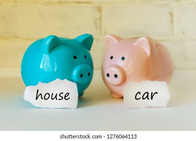 """two piggy banks with inscriptions """"car house""""on a white background"""