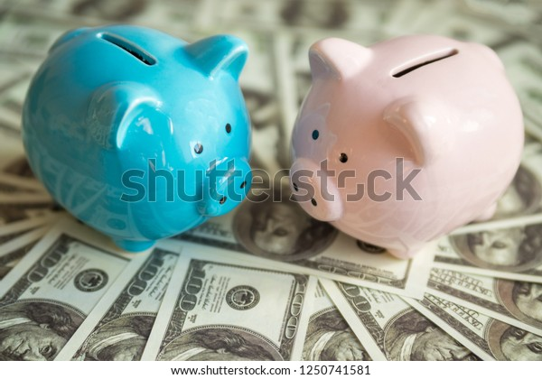 Two piggy banks on money dollars banknotes, a pair of blue and pink. Concept business idea, new year of the pig.