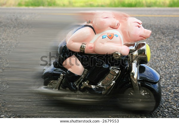 Two pigs on motorcycle going down the road