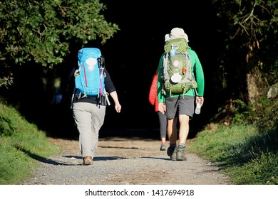 Two pilgrims are walking on the way to Santiago de Compostela. The sunny way is entering into a shady wood. Location: Galicia, Spain.