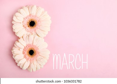 Two pink gerbera flowers on a pink background. Copy space. The concept is March 8.