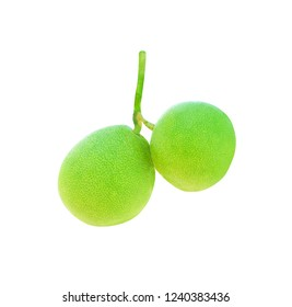 Two pomelo or citrus maxima isolated on white background with clipping path