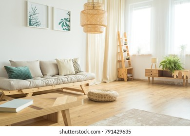 Two posters of plants hanging over a comfy sofa with cushions in a bright wooden living room interior