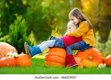 Two pretty little sisters having fun together on a pumpkin patch on beautiful autumn day outdoors