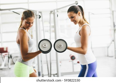 Two pretty young women having dumbbells workout in the gym