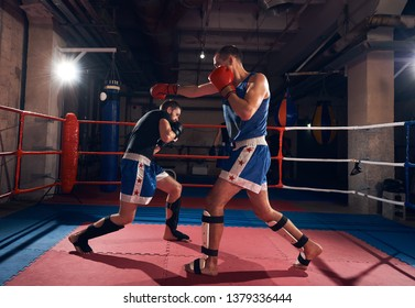 Two professional men kickboxers exercising kickboxing in the ring at the health club