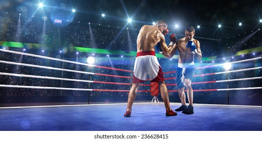 Two professionl boxers are fighting on the grand arena panorama view