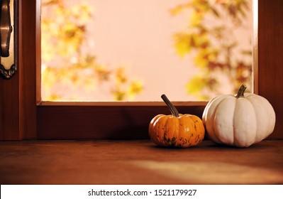 two pumpkins on window backgrond