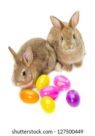 Two rabbits with several colored eggs sitting on white background.