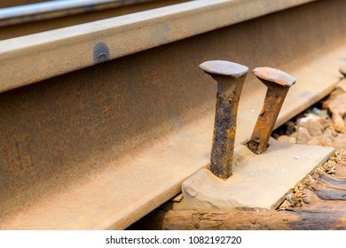 Two railway spikes lifting up. They are supposed to be holding the track tightly but no longer do so. Closeup view.