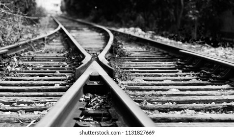 Two railway tracks merge together.