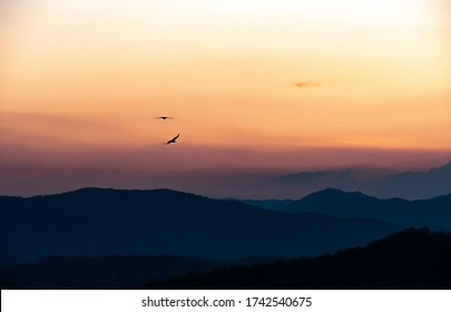 Two Ravens flying on a cloudy sky above Ljubljana at Dusk, taken from the Ljubljana Castle!