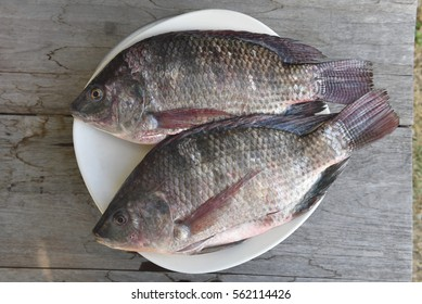 two raw nile tilapia fish on white dish