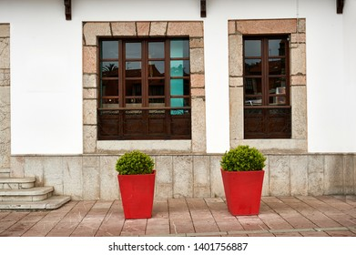 two red planters with small bushes in front of a buildings with two asymmetric windows