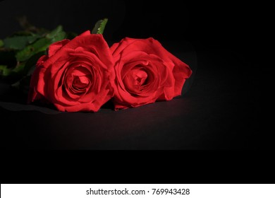 Two red roses lying down on a black background with copy space
