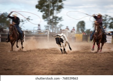 Two Riders In A Calf Roping Event At A Country Rodeo