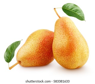 Two ripe red yellow pear fruits with green leaves isolated on white background