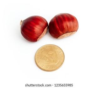 Two roasted chestnuts and one forint, Hungarian money coin, isolated on white background. Selling seasonal street food, chestnuts business conсept.