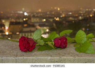 Two roses in the night above the city of lovers, Paris