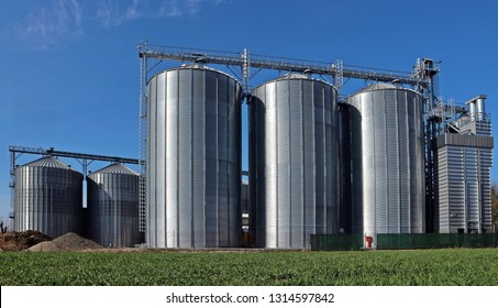 Two rows of grain silos bright under the spring sun