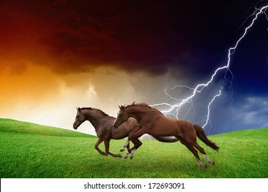 Two running horses, green hills, dark stormy sky, lightning, picture for chinese year of horse 2014