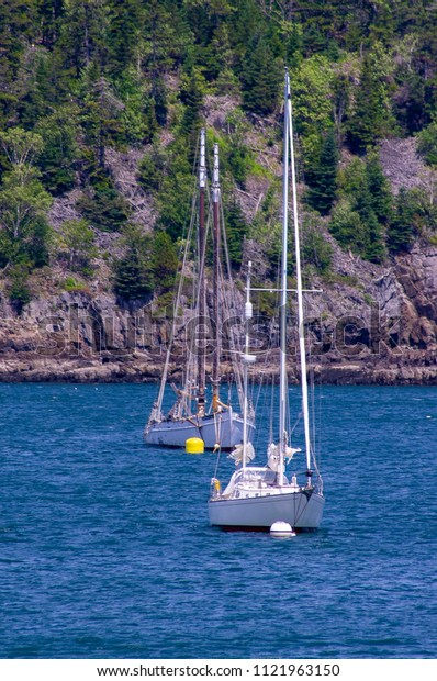Two sail boats with sails lowered, anchored in front of tree covered rocky coastline cliff.