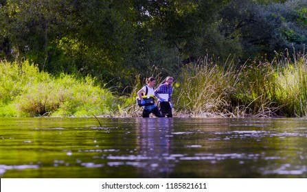 Two scientists ecologists in high rubber boots walking in the water of the forest river. Field work