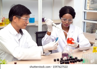Two scientists are working in laboratory. Young female researcher and her senior supervisor are doing investigations on laboratory equipment.