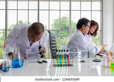 Two scientists (young woman and her professor) discuss about the lab result on the monitor of notebook in the fish laboratory with the natural green tree background and glass fish tank, colorful tube