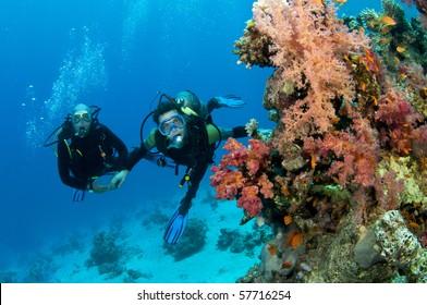 two scuba divers underwater having fun